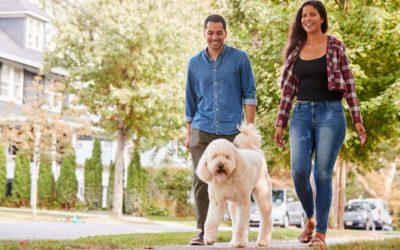 Tips for Choosing the Right Neighborhood